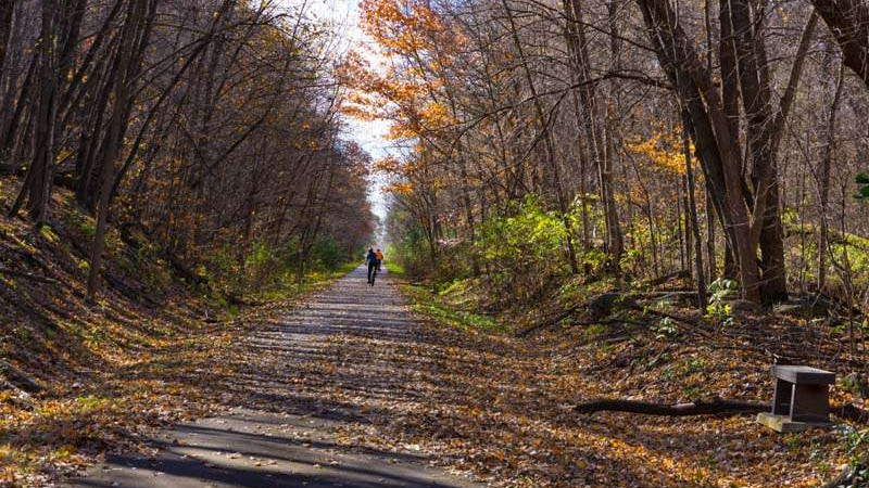 Fall colors on the Lake Wobegon Trail