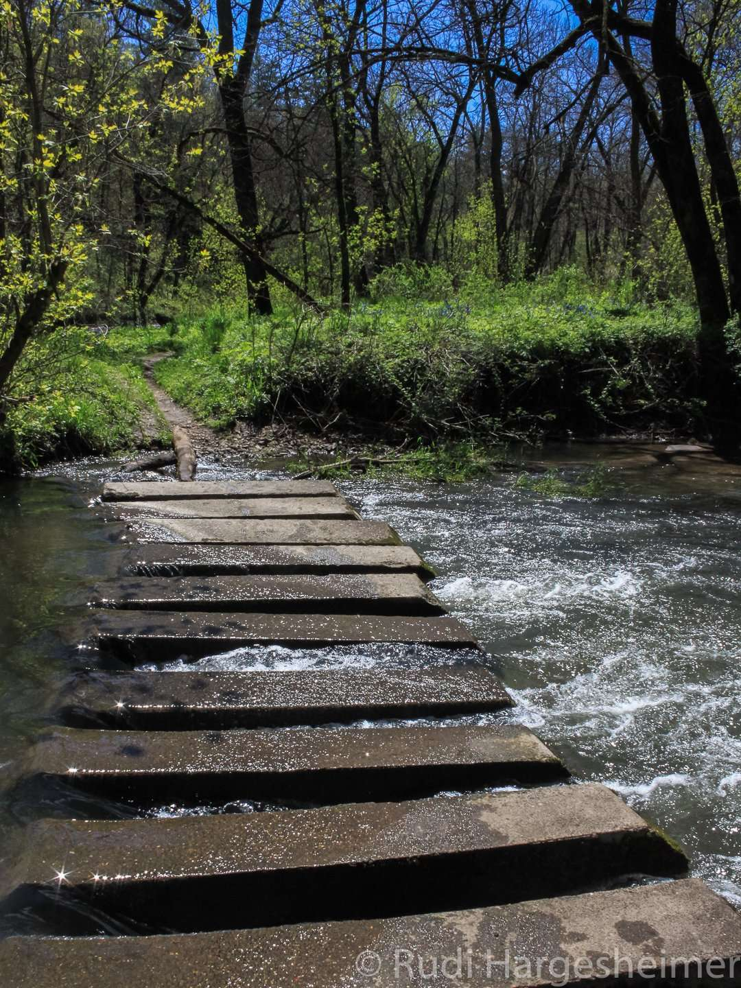 One of the many river crossing on Carley's hiking trails