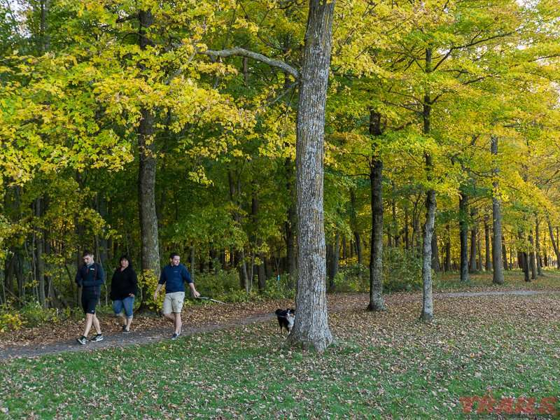 A fall stroll through the park at Father Hennepin State Park