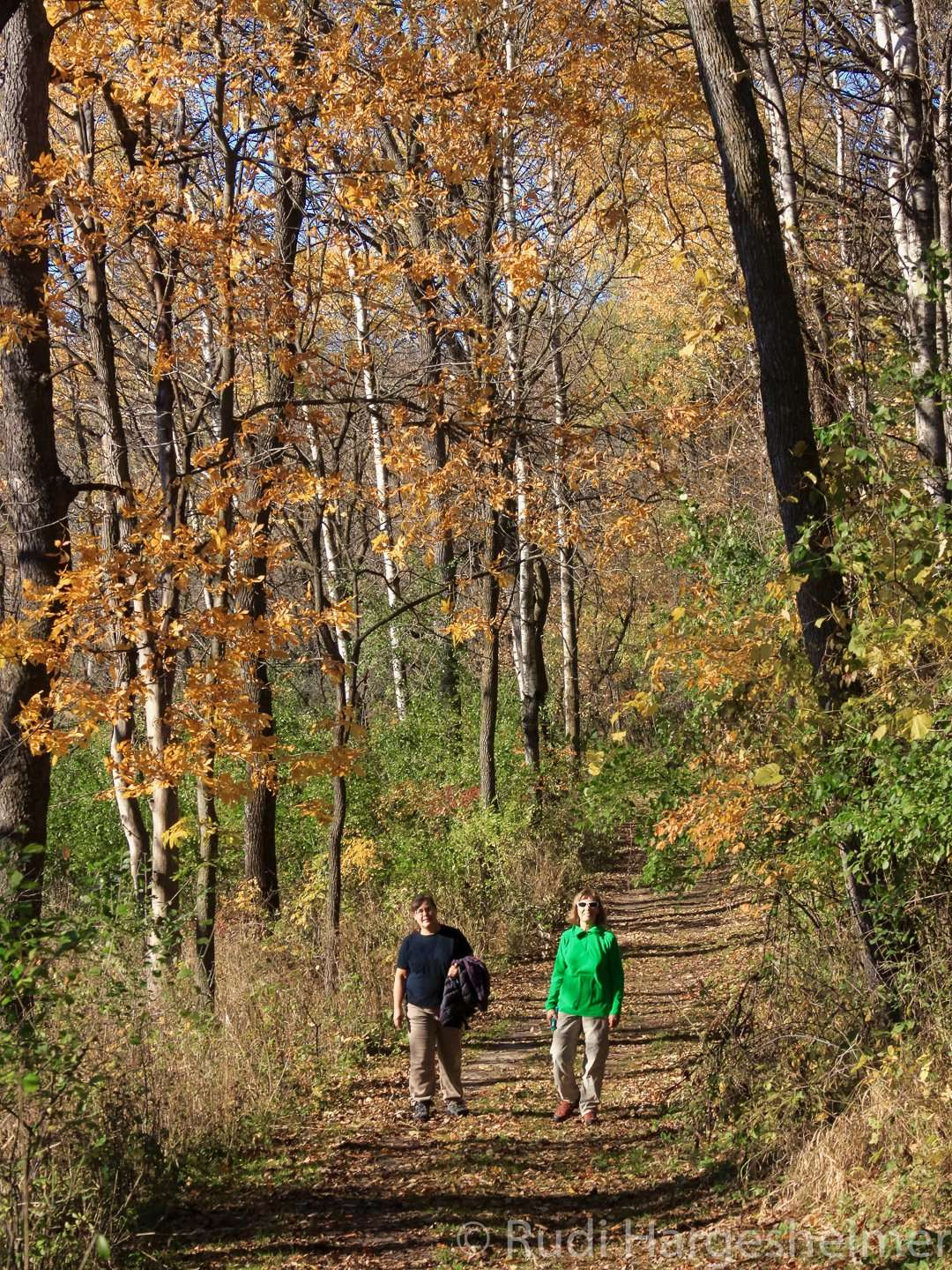 A fall walk at Flandrau State Park