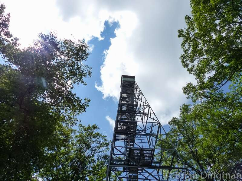 The fire tower just off Afton Heights Trail at Itasca State Park