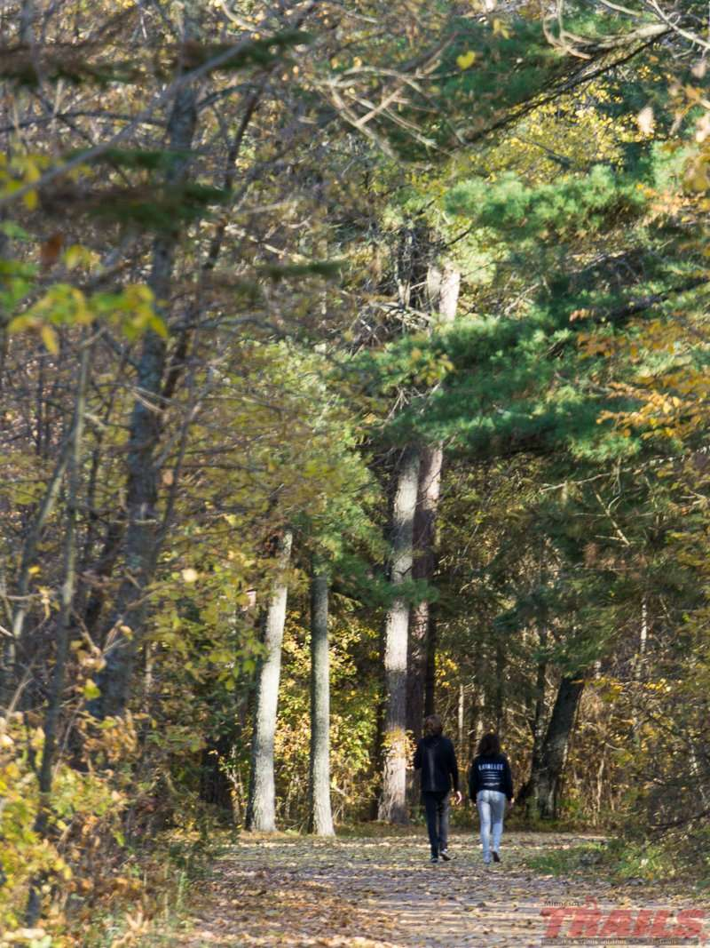 The Paul Bunyan Trail in Bemidji State Park