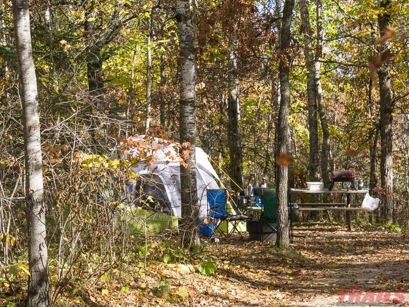 A typical campsite at Lake Bemidji State Park