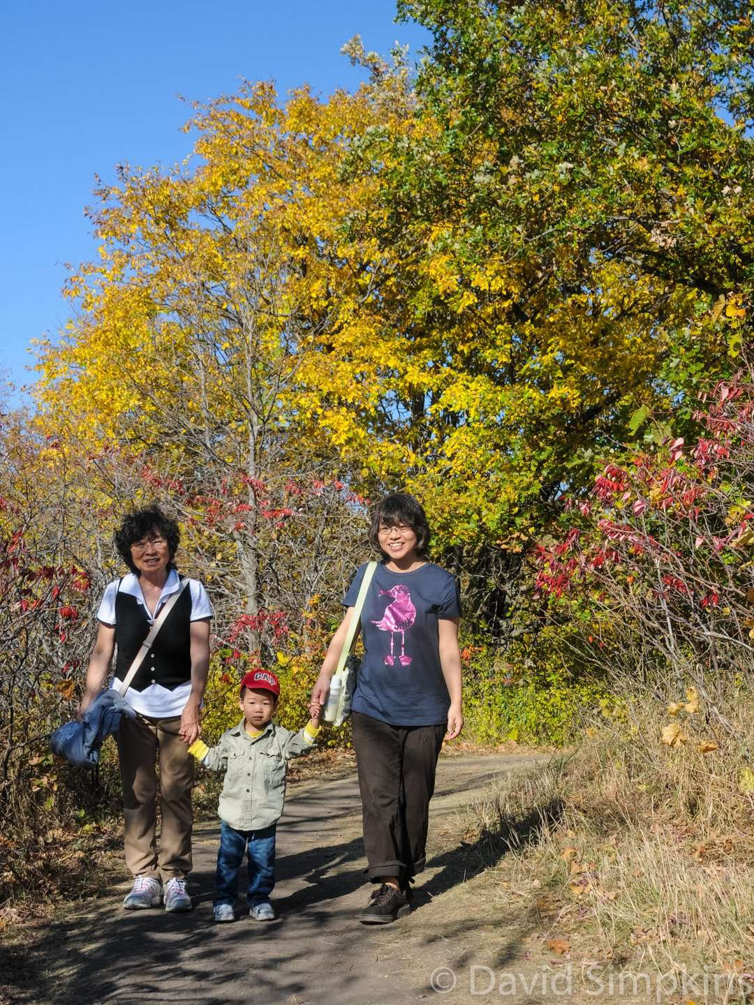Fall colors bring families for an afternoon hike at Maplewood State Park