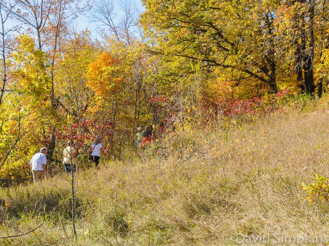 The hills and valleys attract many hikers at Maplewood State Park