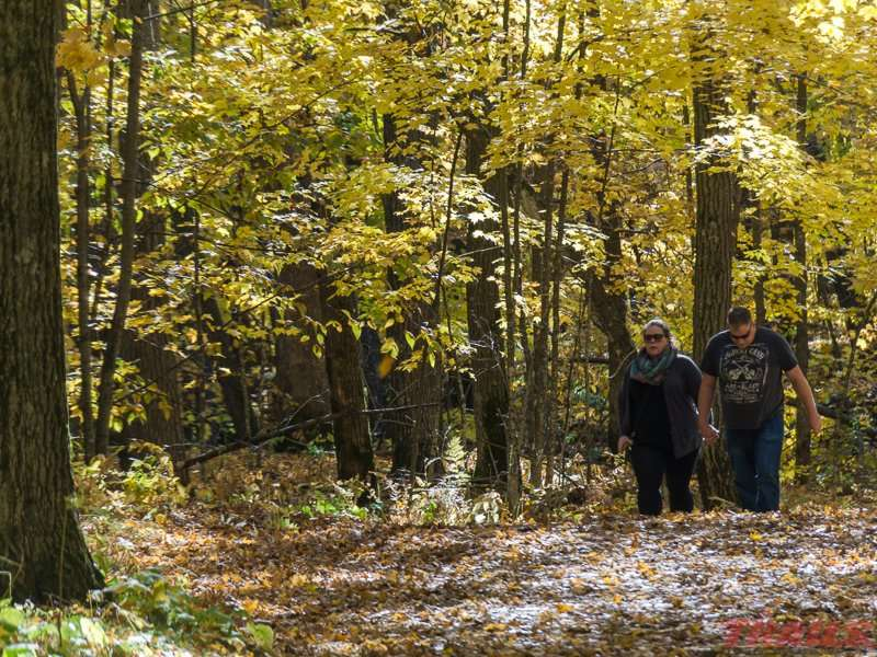 A fine fall afternoon brings hikers to the park at Mille Lacs Kathio State Park