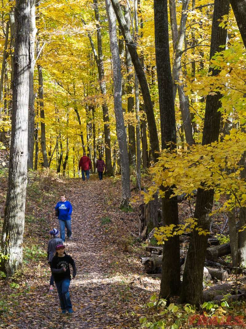 The trail to the fire tower is a popular destination at Mille Lacs Kathio State Park