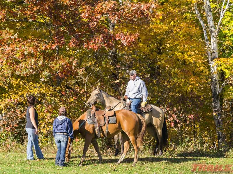 Mille Lacs Kathio has 27 miles of equestrian trails