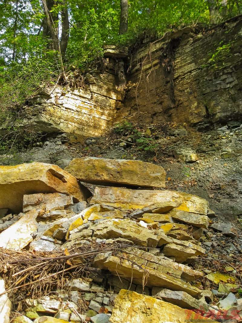 Soft Sandstone is worn away by water over time and the remaining hard limestone overhangs sometimes collapse into Prairie Creek at Nerstrand Big Woods State Park