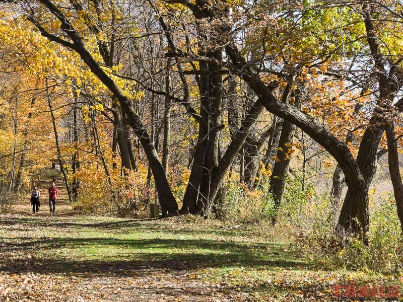 A fall hike on the trails near the lake at Rice Lake State Park