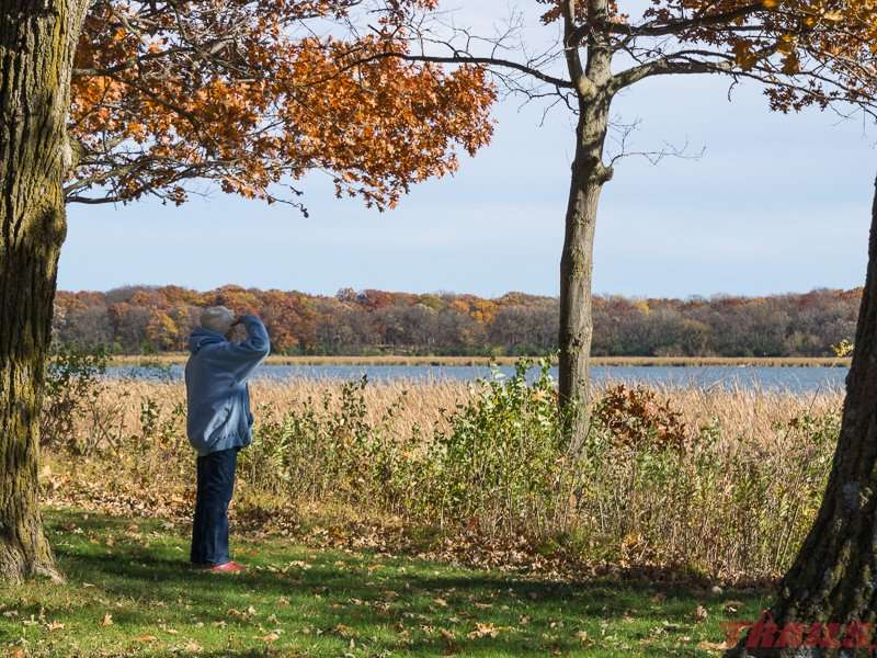 Beautiful views across Rice Lake in the fall at Rice Lake State Park