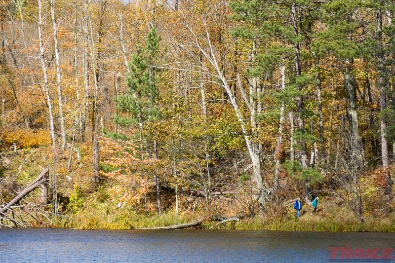 A fall walk around Loon Lake at Savanna Portage State Park