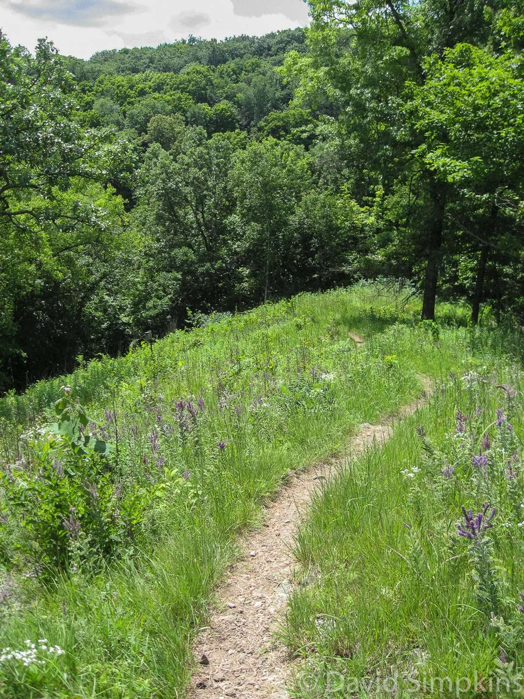 The bluffs at Beaver Creek Valley are up to 250 feet high