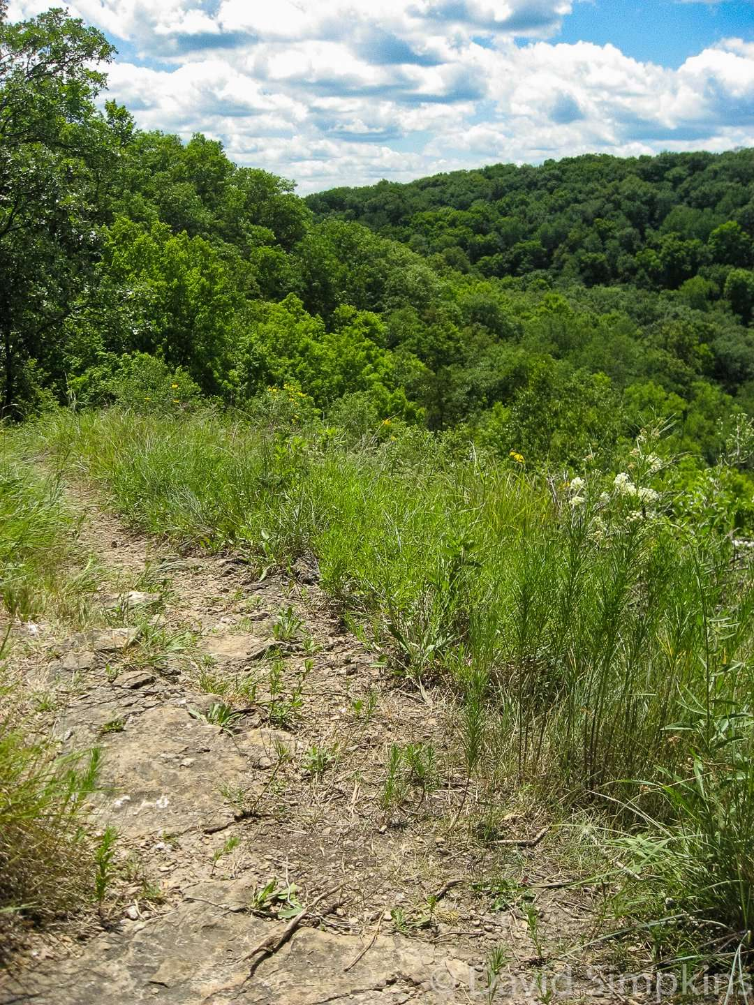 Scenic views of the valley from atop the bluffs at Beaver Creek Valley State Park