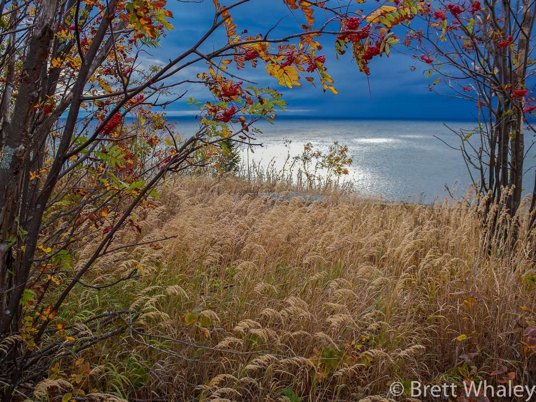 Hiking trails offer great views of Lake Superior at Split Rock Lighthouse State Park
