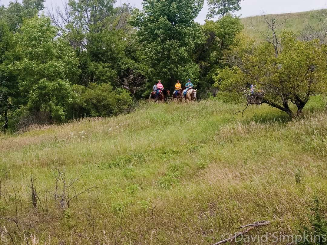Most of the park's trail system is shared between hikers and equestrians at Upper Sioux Agency State Park