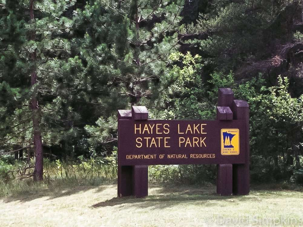 Hayes Lake State Park is located 15 miles southeast of Roseau off the Waters of the Dancing Sky Scenic Byway in Minnesota's Roseau County.