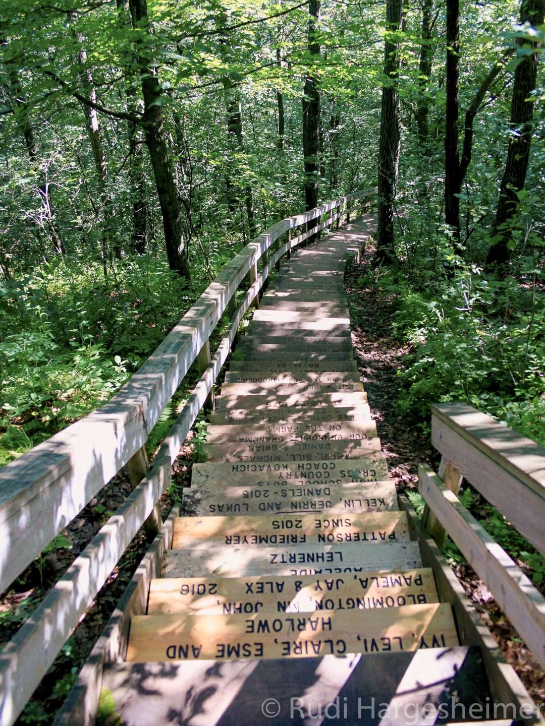 Donors' names on the repaired steps to the lookout tower at Whitewater State Park