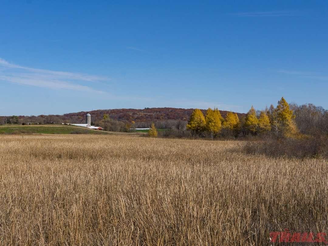 Fall scenery near Albany on the Lake Wobegon Trail