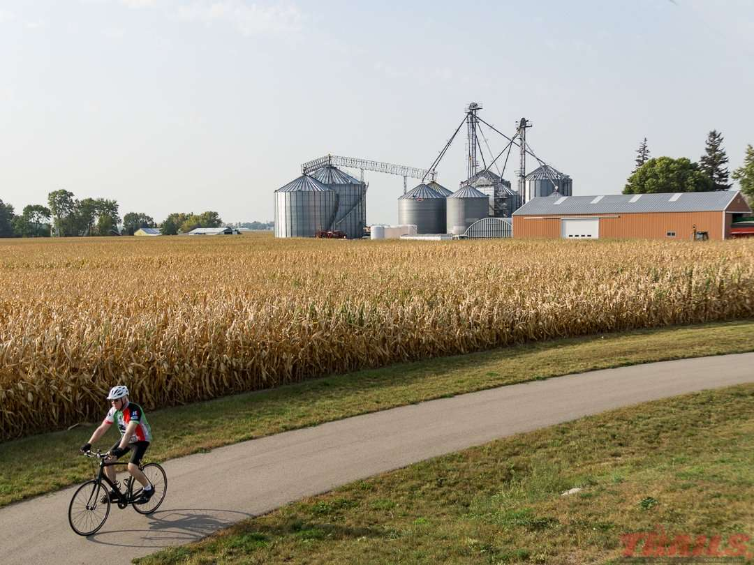Between Rose Creek and Austin, the shooting Star State Trail passes through southern Minnesota farm country
