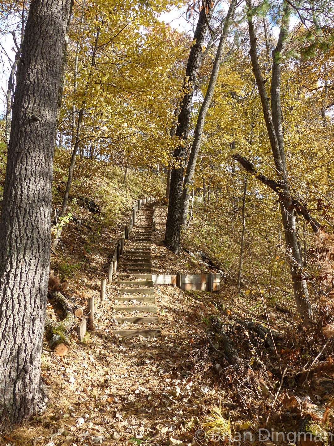 St. Croix State Park has 127 miles of hiking trails