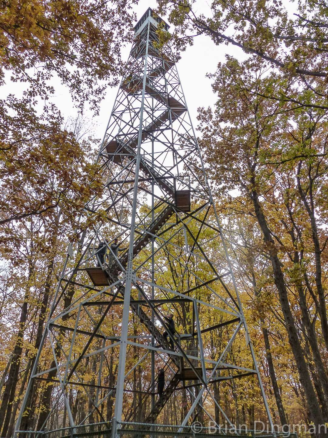 The observation tower is just off the Matthew Lourey State Trail in the southwestern corner of St. Croix State Park