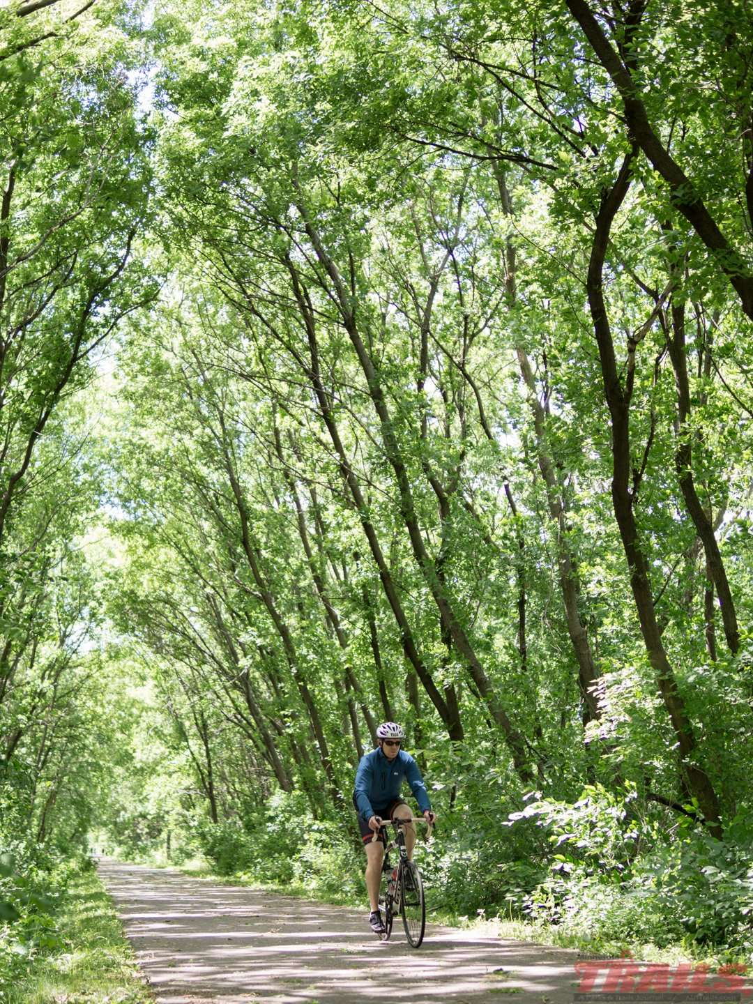 A tunnel of trees west of Mound on the Dakota Rail Regional Trail
