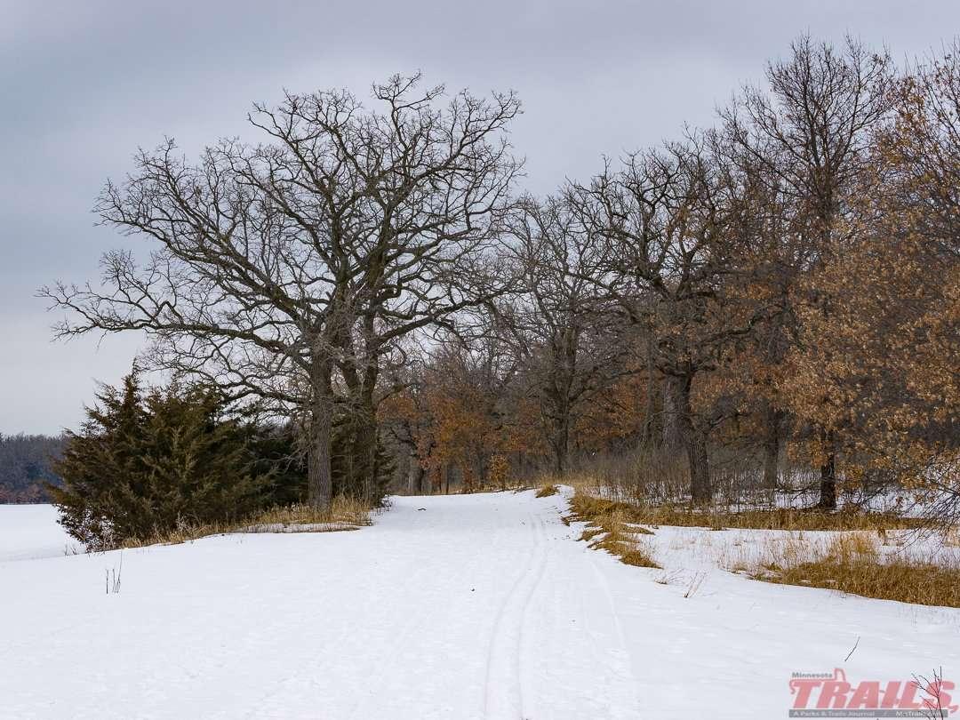 Anoka Nature Preserve Ski Trails
