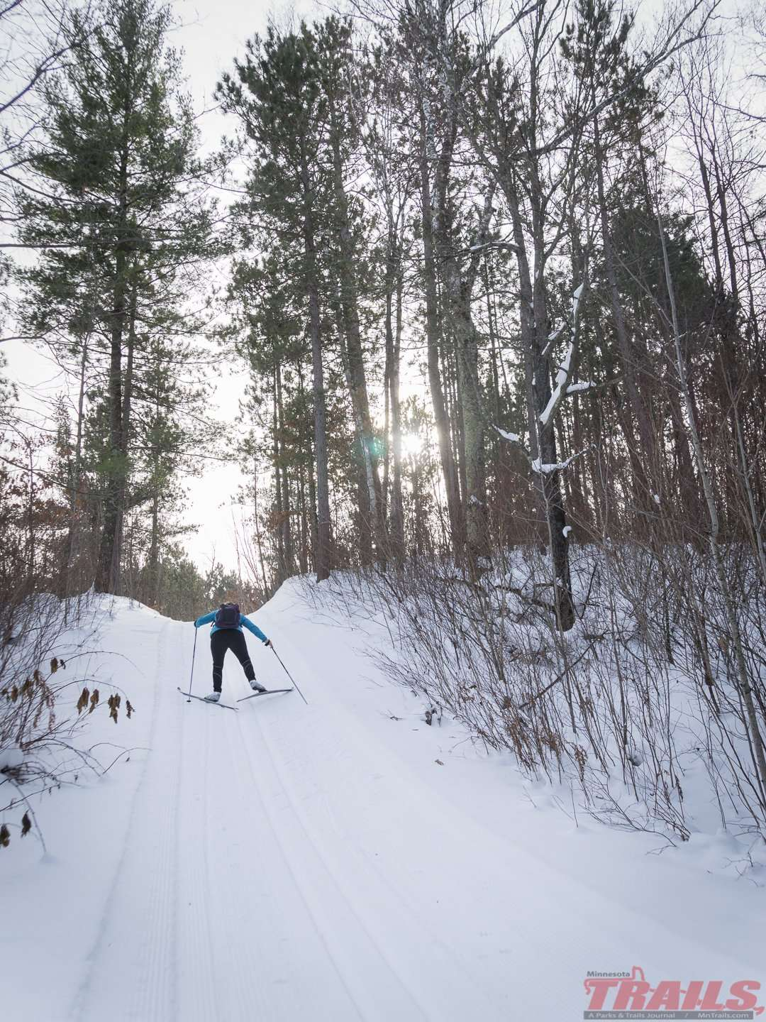 Cut Lake Ski Trail