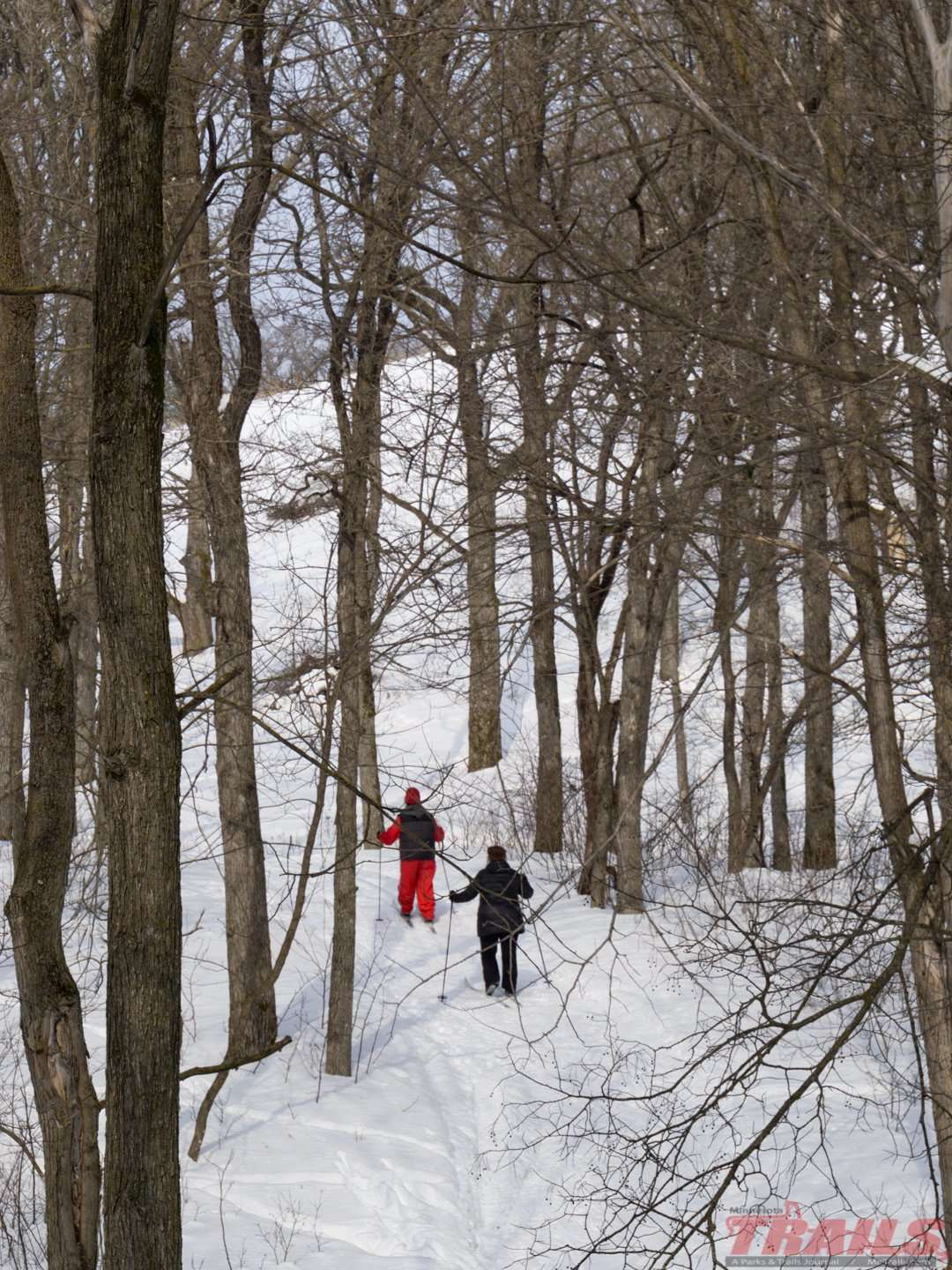 Sibley State Park Ski Trails