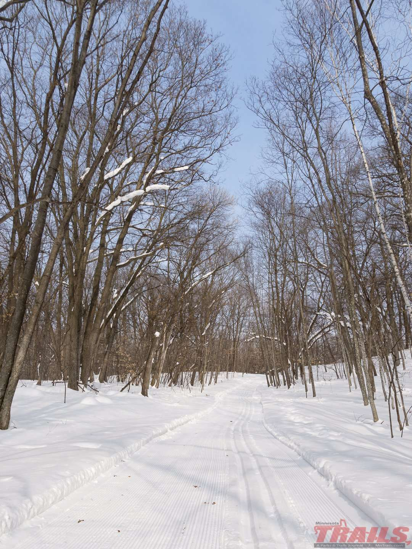 Stanley Eddy Regional Park Ski Trails