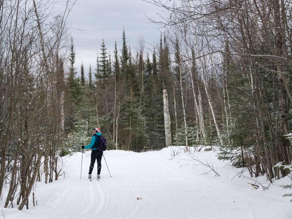 Erkki Harju Ski Trail