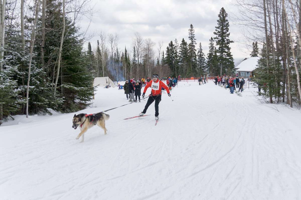 Pincushion Mountain Ski Trail