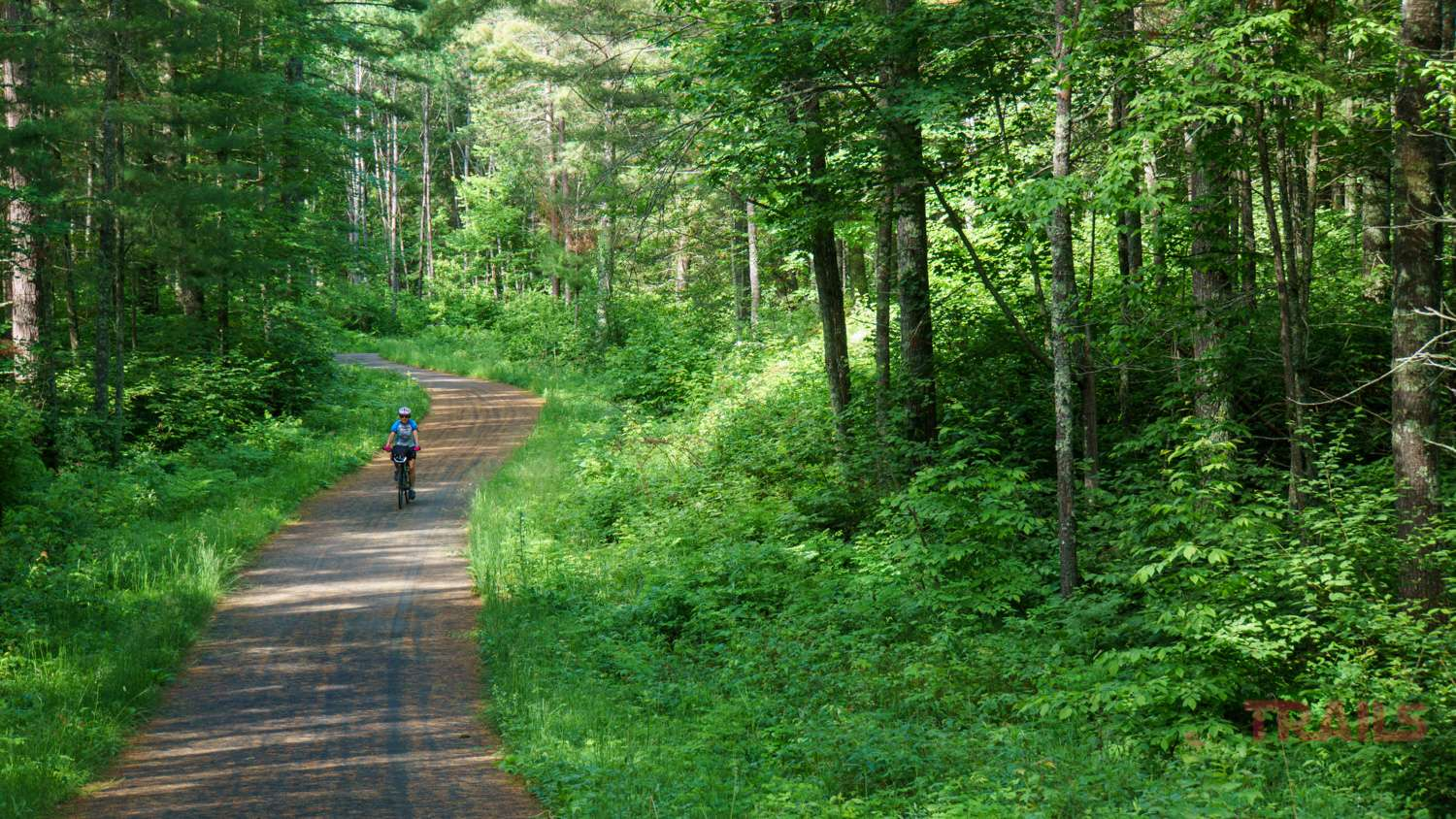 A woman rides a bike on a trail through the forest