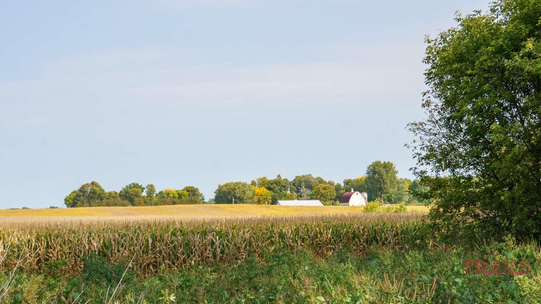 A farm in a cornfield