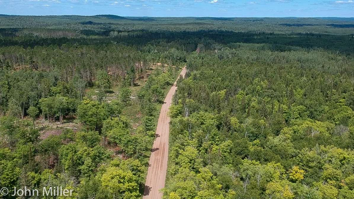 Arial view of forest gravel road