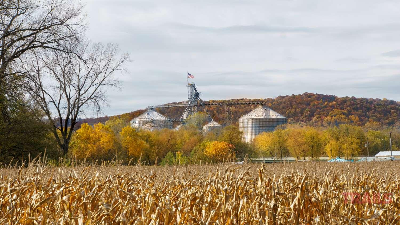 Grain elevator in fall scenery