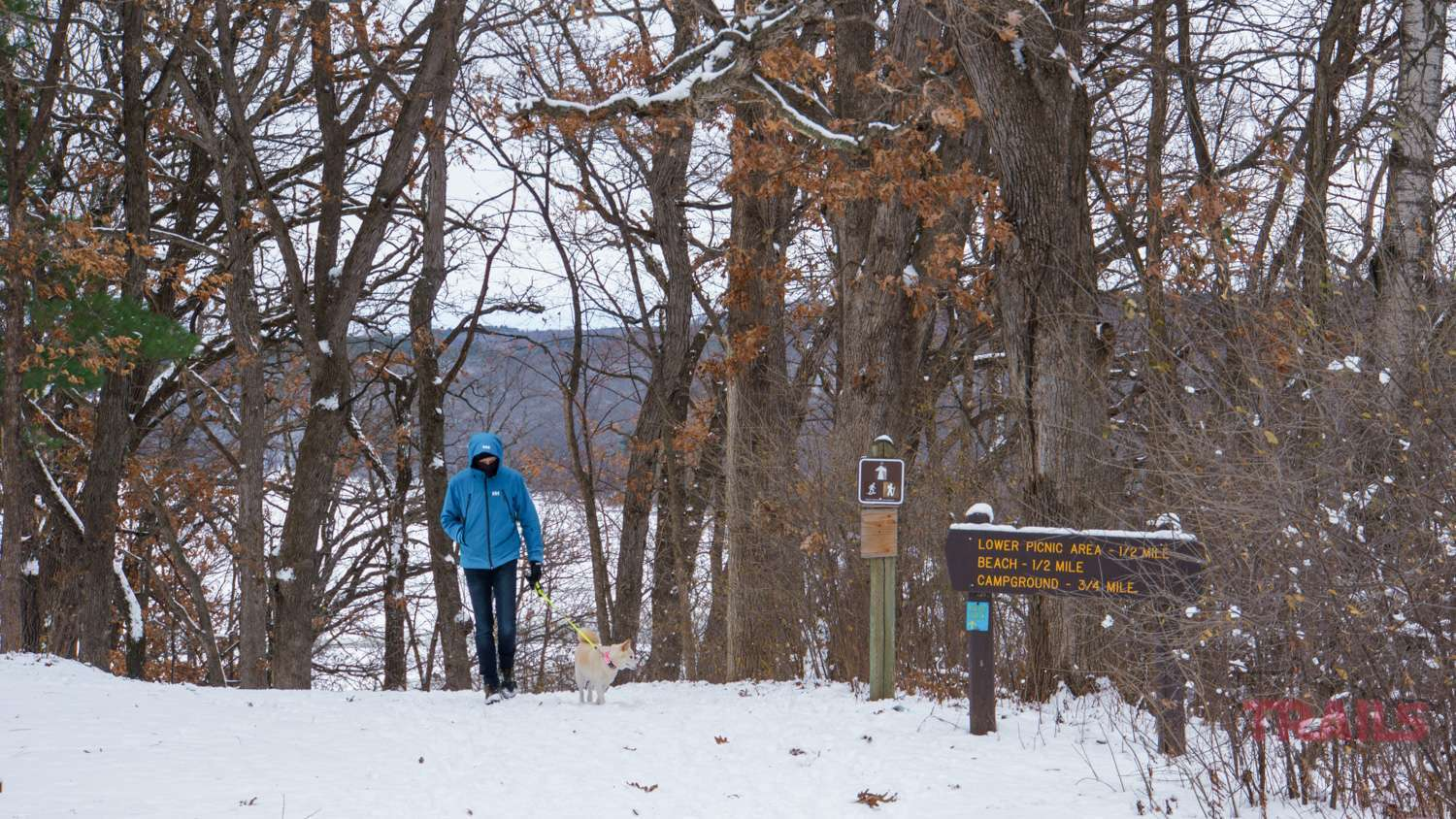 Walking the dog at Afton State Park in the winter