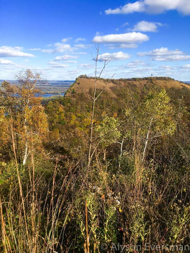 Scenic Overlook at Great River Bluffs State Park