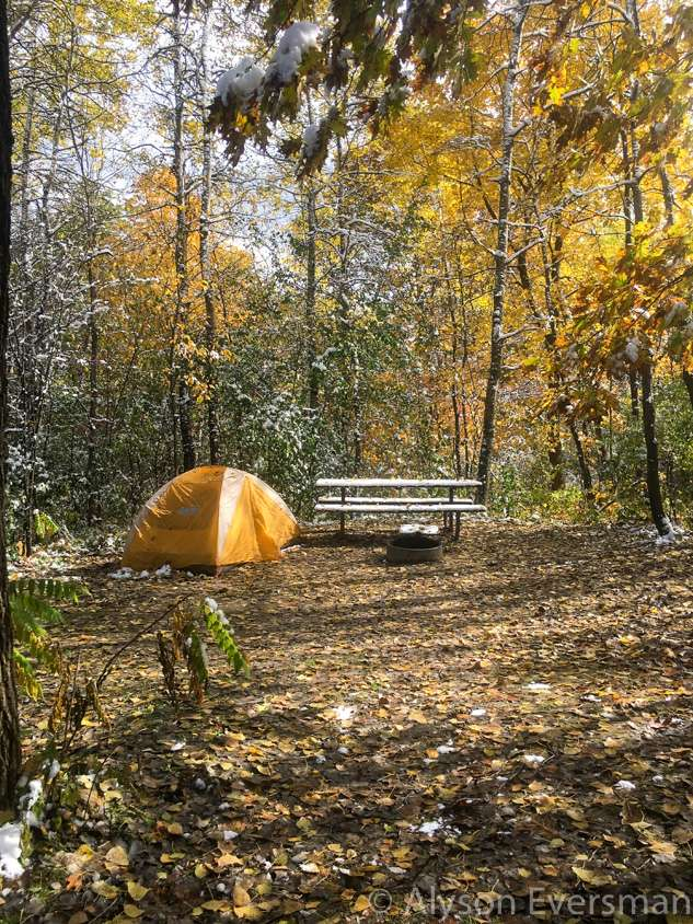 A tent campsite in the woods