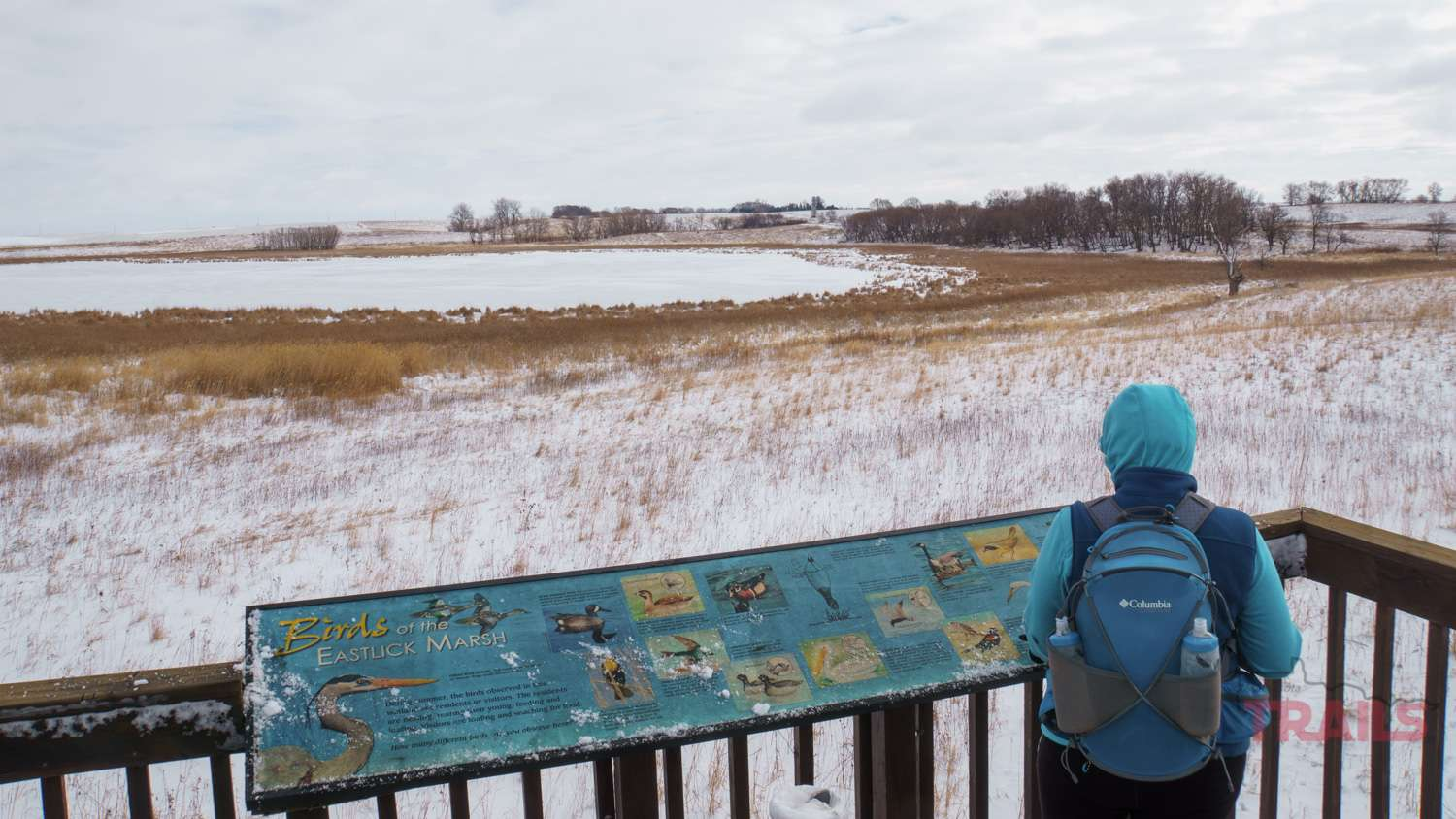A woman looks out over a frozen lake in the prairie from a viewing platform