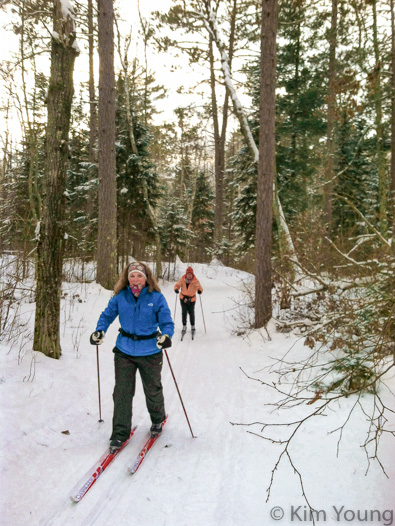 A woman skis through a forest of pine trees