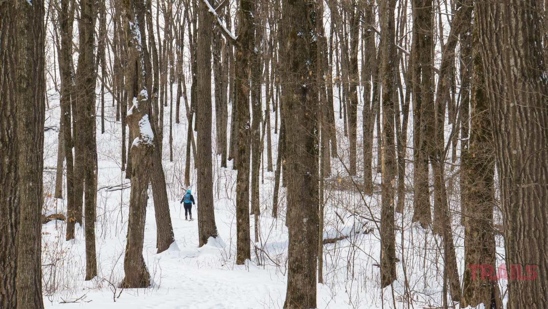 A woman walks through a wintery forest