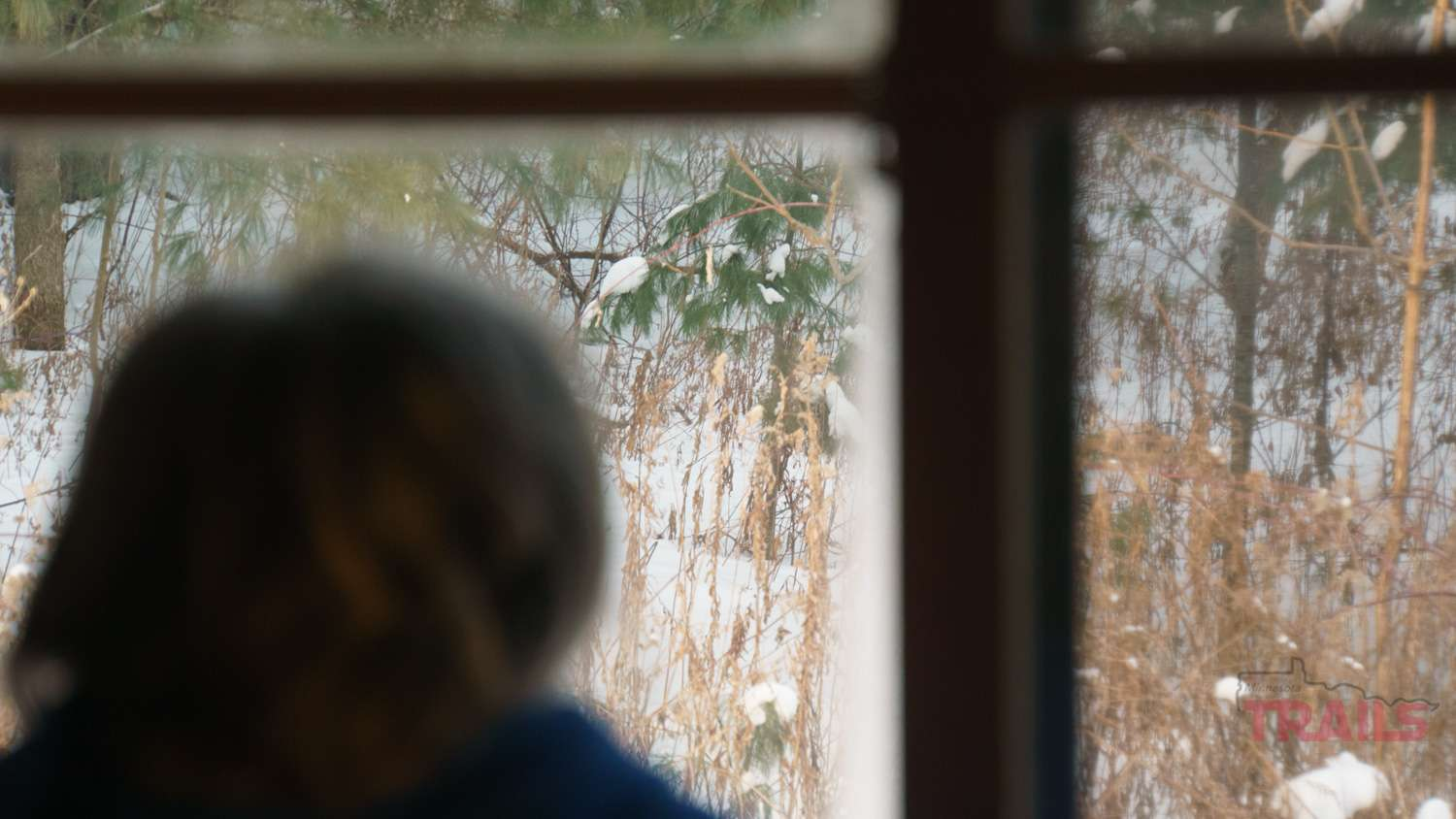 A woman looks out of a window onto a snowy landscape