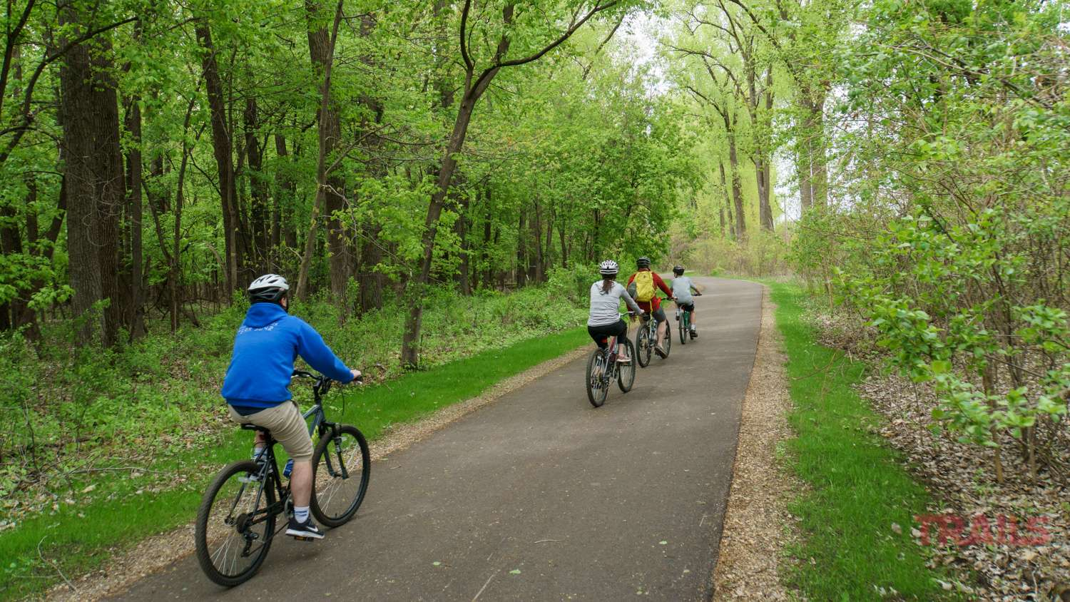A group of four rides bicycles through a wooded area on a paved trail in the spring