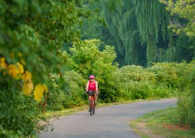 A woman rides a bike on a trail in a wooded setting