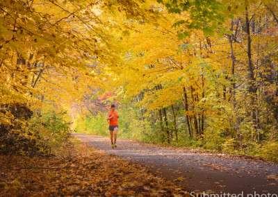 A man runs on a trail through a fall forest