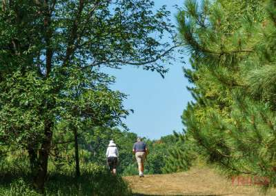 Two people hike down a trail at a park in Lakeville MN