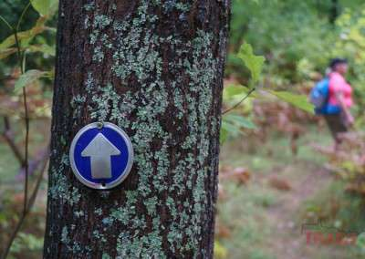 A plaque depicting an arrow shows the right way on a hiking path