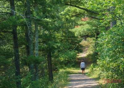 A woman walks through a wooded area on a path in the sunshine